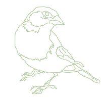 Greenfinch Shop
